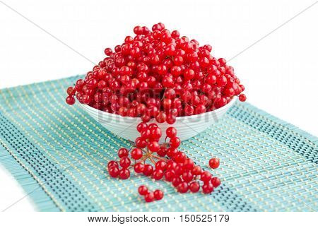 Red Guelder Rose Berries In White Plate On Blue Underlay