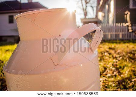 sun peeks over white bucket in garden