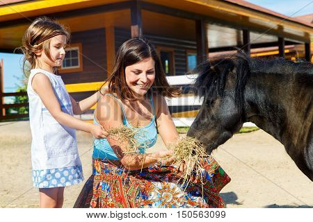 Mother and daughter are fed with straw ponies on the farm.