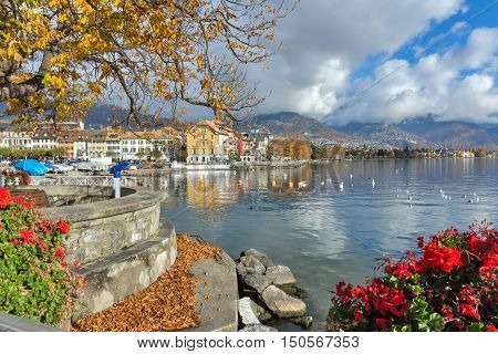 Flowers in embankment of town of Vevey and Lake Geneva, canton of Vaud, Switzerland