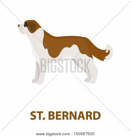 St. Bernard dog rastr illustration icon in cartoon design