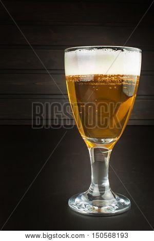 glass of beer on dark background. mug of beer on dark background.
