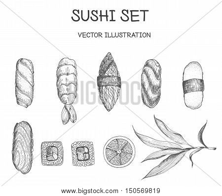 Sushi vector set. Sushi with tuna and shrimp sushi. Sushi with salmon red fish. Sushi linear graphic.
