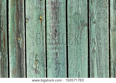 texture of wooden planks painted in verdant