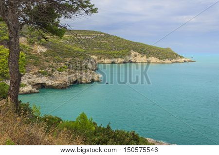 Gargano coast: Baia di Campi beach,Vieste-(Apulia) ITALY-In the distance bathers visiting the sea caves by canoe.