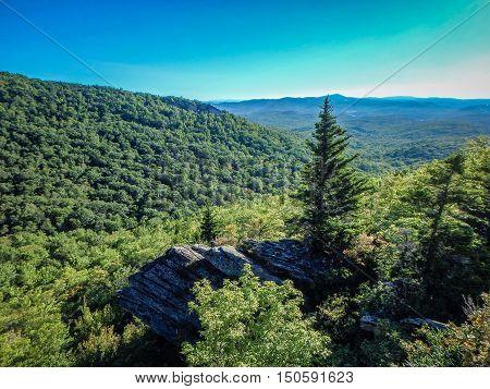 Nature Trail Scenes To Calloway Peak North Carolina