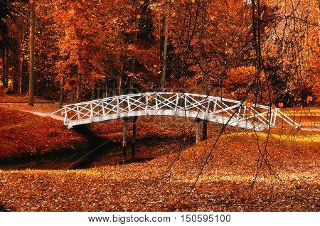 Autumn park landscape - small white wooden bridge in the autumn park among the red autumn trees and dry autumn leaves. Autumn park landscape colorful autumn view. Park with fallen autumn leaves