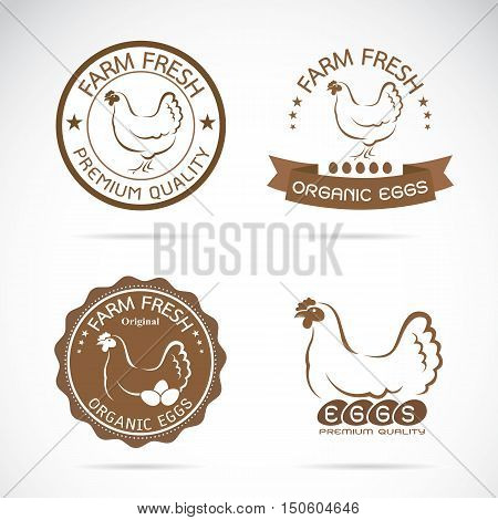 Vector of a hen label design on white background Vector chicken label for your design.