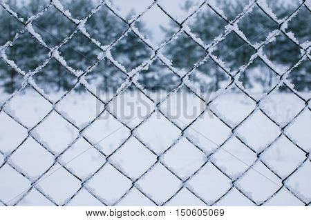 wire fence and snow. wire mesh fence in the snow. texture, background