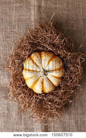 High angle view of a single decorative pumpkin in straw on a burlap surface.