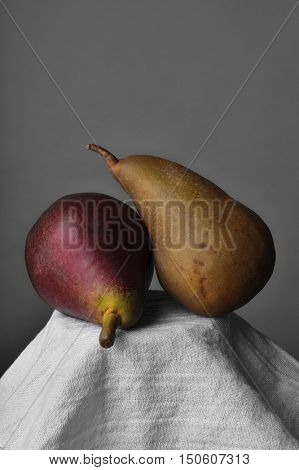 Still life with two pears on a pedestal covered with a white kitchen towel. Vertical format on a gray background with copy space.