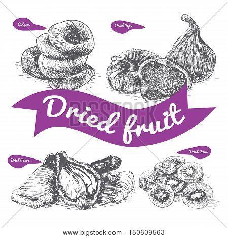 Dried fruit illustration. Vector illustration of dried fruit.