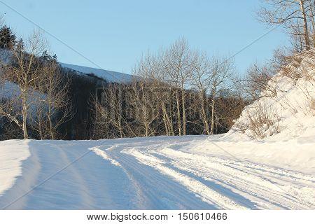 winter, snow, frost, road, landscape, winter road, winter, landscape, road, highway, country road