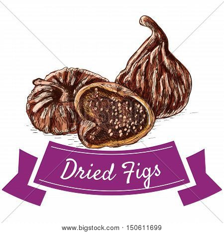 Dried figs colorful illustration. Vector illustration of dried figs.