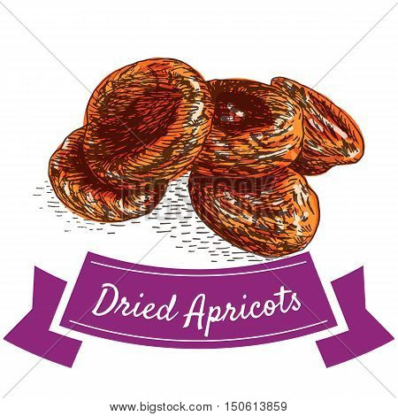 Dried apricots colorful illustration. Vector illustration of dried apricots.