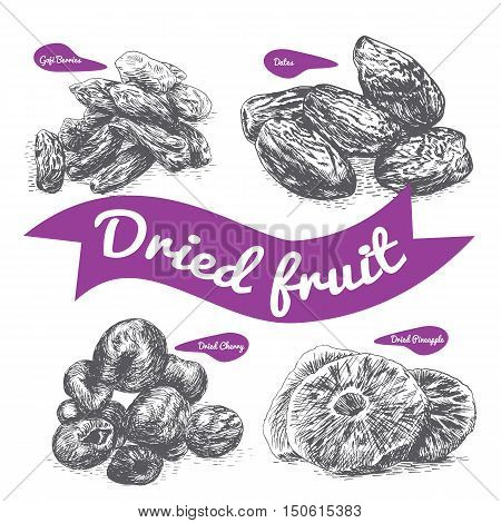 Dried fruit illustration. Vector illustration of dried fruit.