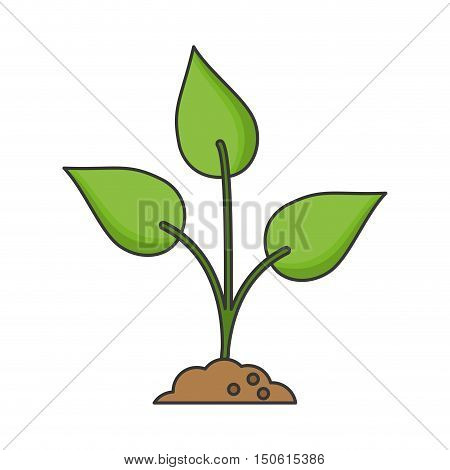Leaves and nature plant icon. Ecology renewable and conservation theme. Isolated design. Vector illustration