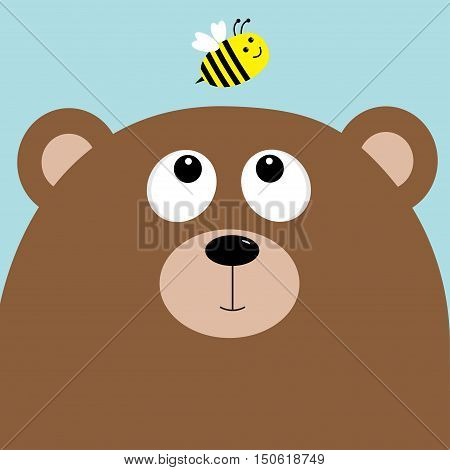 Bear grizzly big head looking at honey bee insect. Cute cartoon character. Forest baby animal collection. Blue sky background. Isolated. Flat Vector illustration