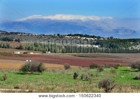 Galilee landscape view of Mount Hermon Israel.