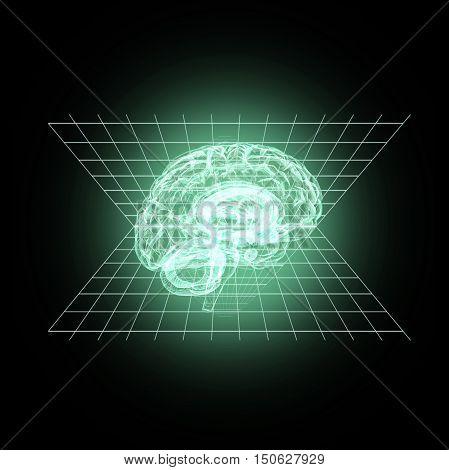 Model of a human brain in 3D measurement. 3D illustration