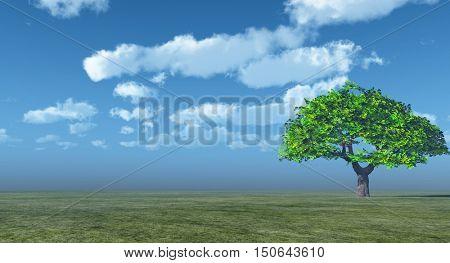 Alone Tree at sea beach.3D rendering;