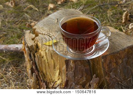 cup of hot tea on the stump at autumn weather