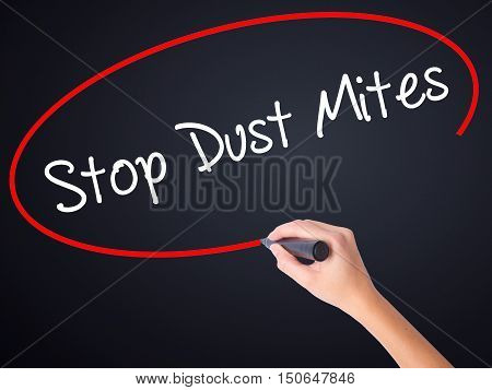 Woman Hand Writing Stop Dust Mites  With A Marker Over Transparent Board .