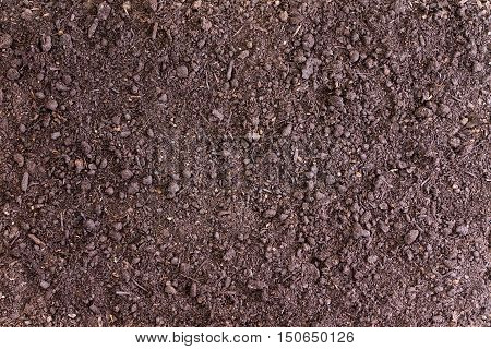 Background Of Bare Soil With Copy Space