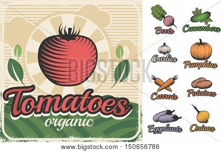 Colorful vintage style poster with different raw food vegetable symbols fresh and organic captions flat vector illustration