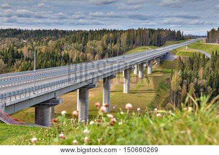 Steel girder bridge on reinforced concrete pillars four-lane highway crosses the Russian forest sunny summer day.