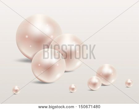 Pearl realistic set isolated on white background.Precious pearl in sphere form. Pearl is luxury glossy stone vector illustration