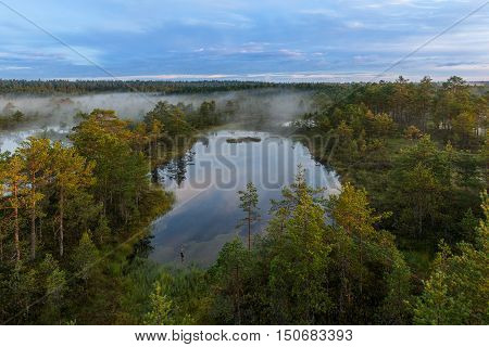 Viru Bog in Lahemaa National Park, Estonia.