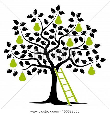 vector pear tree and ladder isolated on white background