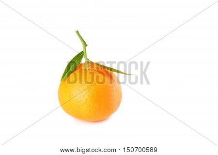 Ripe Mandarin Isolated On A White Background
