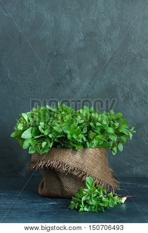 Brown pot and sheaf of mint with sackcloth on gray background
