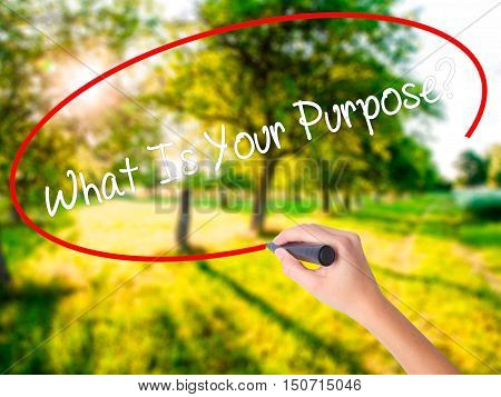 Woman Hand Writing What Is Your Purpose?  With A Marker Over Transparent Board