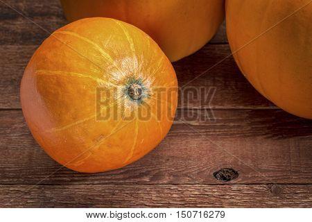 red kuri winter squash and pumpkins against rustic barn wood