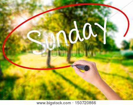 Woman Hand Writing Sunday  With A Marker Over Transparent Board