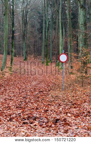 No Vehicles Traffic Sign In Forest
