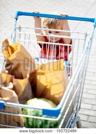 Cute Boy Pushes Shopping Trolley
