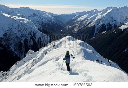A Woman Hiker Descends a Snowy Peak with Mountain Views and River Canyon Beyond.  Mt Bealey, Arthurs Pass, Southern Alps, Canterbury, New Zealand