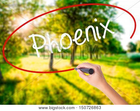 Woman Hand Writing Phoenix  With A Marker Over Transparent Board