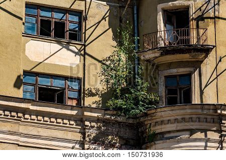 Decayed building with broken windows and plants on a wall