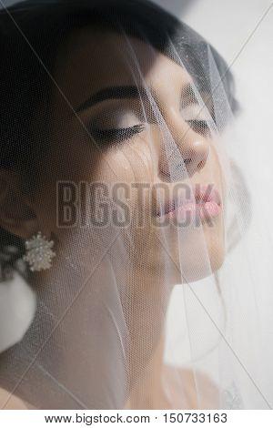 Beautiful Bride Under Veil