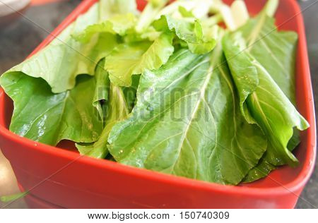 brassica campestris or chinese mustard green vegetable