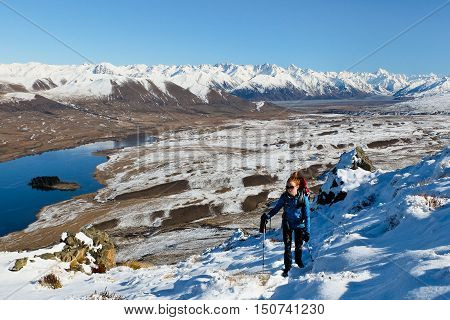 A Woman Hiker Climbs a Snowy Mountain.  Hakatere Conservation Park, Southern Alps, New Zealand
