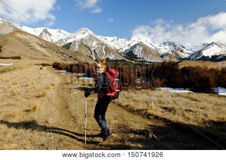 A Woman Hiker Walks Among The Southern Alps.  Arthurs Pass, Canterbury, New Zealand