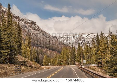 Entering Shoshone National Forest in Wyoming. The forest covers 2.4 million acres.
