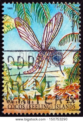 COCOS ISLANDS - CIRCA 1995: a stamp printed in Cocos Islands Australia shows Aedes Mosquito Aedes Insect circa 1995
