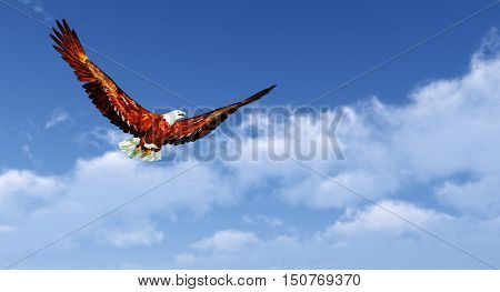 Eagle flying on a background of the  blue sky .3D rendering